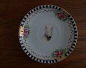 bull terrier plate