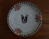 English Bull dog plate