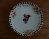 Jack Russel Terrier plate