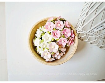 30 Mulberry mixed paper flower / pack