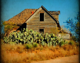 Rustic Photography Western Art Texas Southwestern Home Decor Cactus Barn Fine Art Photography