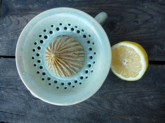 Ceramic Citrus Juicer in Beautiful Pastel Green