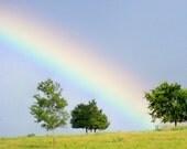 Texas Rainbow Print