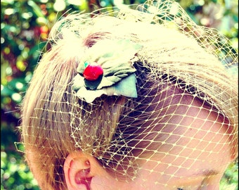 Birdcage veil Eve's veil