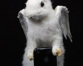 taxidermy of rabbit, named angel ,made by Real rabbit and pigeon wings.