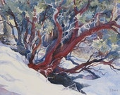 "ORIGINAL WATERCOLOR Landscape Winter Snow Tree Bush Branches Painting 7""x10""  by Olena Baca SALE"