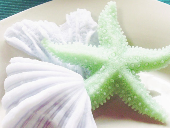 SHELL SOAP, A Simple Seafoam & Lavender Pearl Beach Treasure, Starfish with Coral and Shell, Scented Beach Daisies