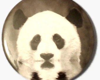 Panda Bear Pocket Mirror