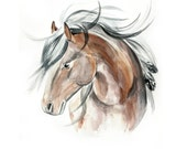 Watercolor Horse Painting 20x27,5 Original Animal Painting - Large Painting