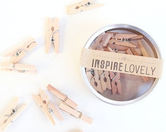 25 Lovely Mini Wooden Clothespins & Studio Canister