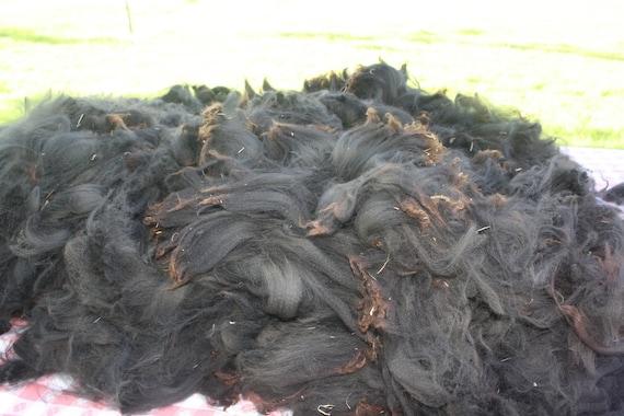 RESERVED for Mayte / Raw Cria Alpaca Fleece  - beautiful-