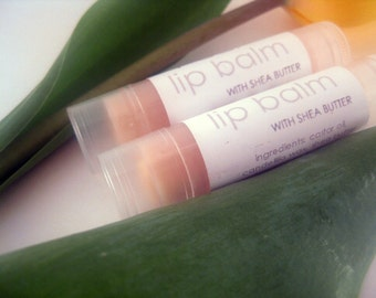 VEGAN Watermelon Lip Balm Moisturizing Lip Treatment Unsweetened Lip Butter with Raw Shea butter, Fruity Summer Flavor