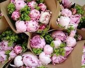 Peonies found in Zurich, Switzerland florist 8x12 photograph