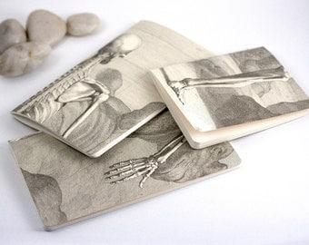 Handbound notebooks, set of three - Anatomy, Skeleton, Bones