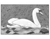 Ink Art Graphic Art Illustration Print Stylised Drawing Swan Bird Water Black And White
