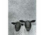 Ink art print, Animal print, Black & white art, A4, Sheep print, Hand drawn, Art drawing of sheep, Black-faced sheep, Winter landscape