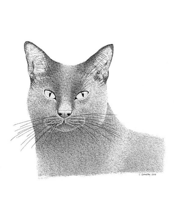 Original Drawing, Original Art, Ink Illustration, Grey Gray Cat Realistic Art Monochrome Pen And Ink, Art, Black And White Art