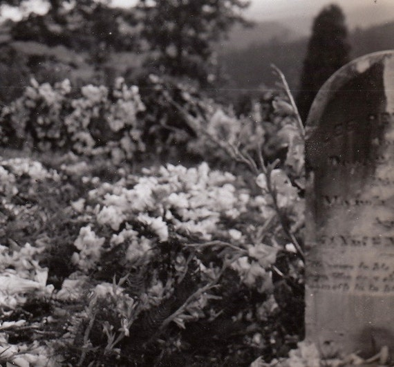 Cemetery Flowers- 1930s Vintage Photograph