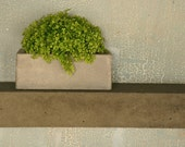 Concrete . Planter II