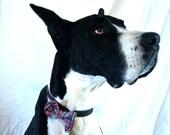 Dapper Dog Bow Tie Collar Accessory  in Red Plaid