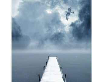 nature photography, Winter, Snow, Stormy, ice Blue, Grey,White, Cottage, Beach, Birds,Water, Dock, Lake, Fine Art Photography 8x10