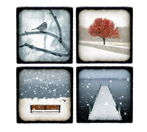 winter photography, Bird, Tree,Snow, Water, Winter, Blue, teal,Grey, Ice, Autumn, 5x5 kids wall art, nursery idea, Fine Art Prints 5x5
