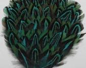 Beautiful 1PCS Greece pad - Exotic Feathers Hat/Headband - FREE SHIPPING