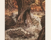 A Midsummer Night's Dream, Come, Now A Roundel, In The Woods Fairy, Arthur Rackham, Printed In Italy, Vintage Children Print