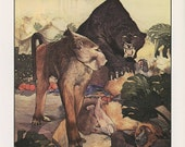 Fantastic Creatures, Monkey Fight With Jaguar Bagheeva In The Jungle Book, Edward Julius Detmold, USA, Antique Children Print