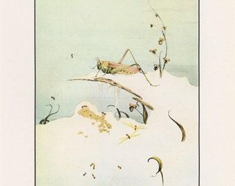 Fantastic Creatures, The Ants And The Grasshopper, Fables Of Aesop, Edward Julius Detmold, USA, Antique Children Print
