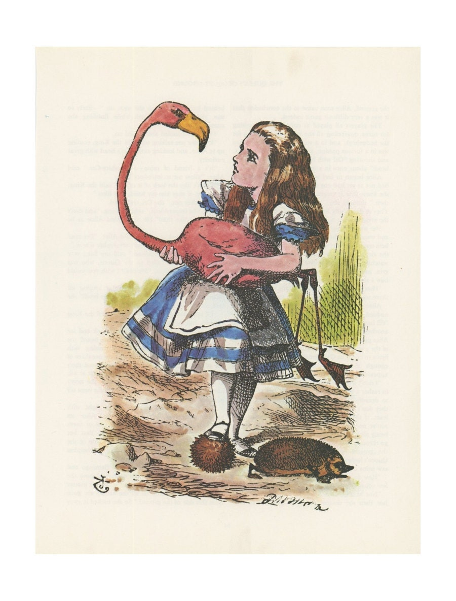 Alice Plays Croquet Pink Flamingo Hedgehog Alice In by ...
