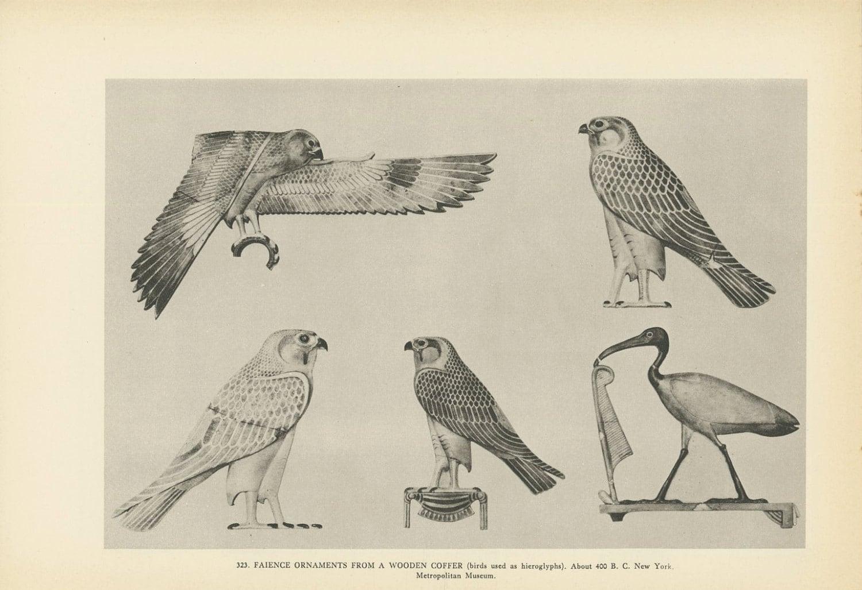 Egyptian Birds Used In Hieroglyphics Falcon Crane Art By Kingpaper