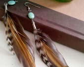 wind.brown feathered earrings with turquoise stones
