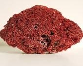 Vintage Decorative Natural Coral Chunk