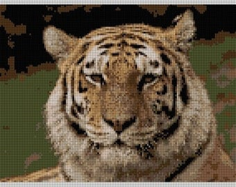 Tiger Needlepoint Kits