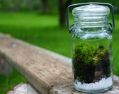 Moss Terrarium, Fathers day, Woodland, Indoor Garden, Green, Nature, Wedding Decor, Table top Decorations, Fathers Day