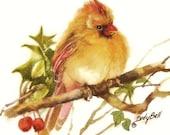 Female Cardinal Bird Print of Watercolor Painting