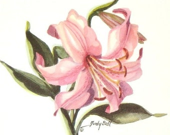 Pink Daylily Print - Watercolor Painting