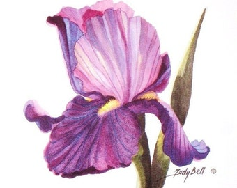 Purple Iris Print - Watercolor Painting