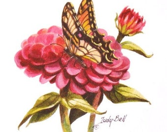 Zinnia -Butterfly Art - Watercolor Print
