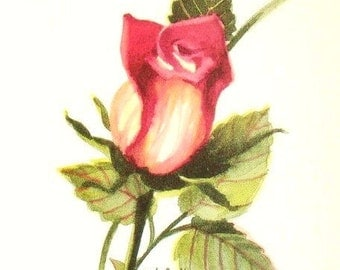 Red Rosebud Watercolor Painting Art Print