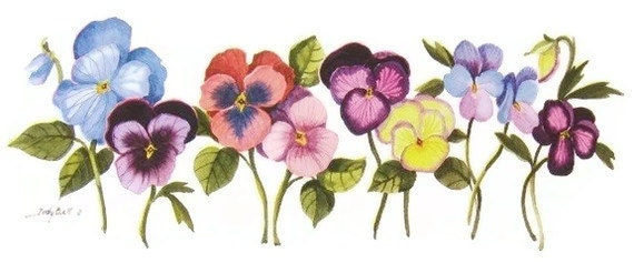 Pansy Watercolor  Print