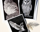 Owls - Set of three greetings cards from Scraperboard designs