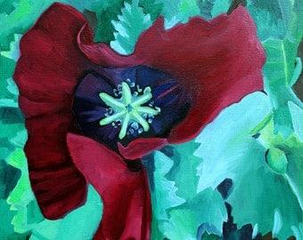 "Oriental Poppy, 11"" by 11"" PRINT - red poppy art, poppy art, poppy painting, red and green"