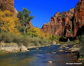 Fall Along The Virgin River - Zion National Park - 8x10 Fine Art Print on Kodak Metallic Paper