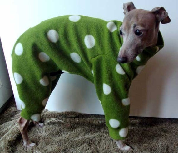 Pea Green Polka Dot Jammies for Italian Greyhounds