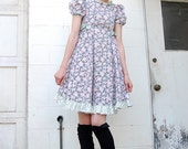 Vintage Gingham and Roses Picnic in the Park Lolita Babydoll Dress