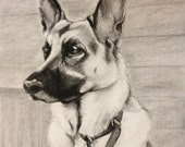 Pencil or charcoal children wedding pet portraits from photographs