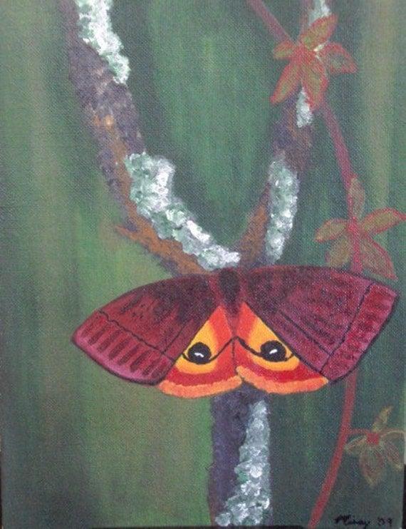 9x12 red and orange Io moth  acrylic painting