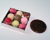 Assorted Macaroon in a  Aluminum Pan for Dollhouse 1/12 Scale